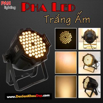 Đèn pha LED vàng nắng
